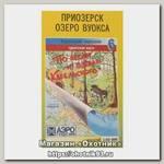 Карта по лесам и озерам Карельского №6