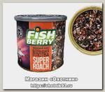 Консервированная зерновая смесь Fish Berry Попова плотва кориандр-фенхель 430мл